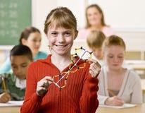 Kursteilnehmerholdingschnecke im Klassenzimmer Stockfotografie