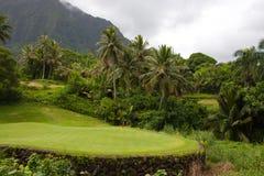 kursu piękny golf Obrazy Stock