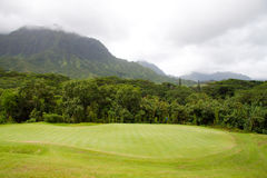 kursu piękny golf Zdjęcia Stock
