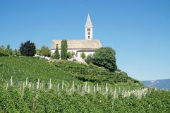Kurtatsch,south Tyrolean Wine Route,Italy Royalty Free Stock Images