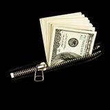 kurtka pieniądze Zdjęcia Royalty Free