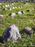 Kurve von Felsen Stockfotografie