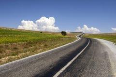 Kurven der Asphaltstraße im ländlichen Gebiet lizenzfreie stockfotografie