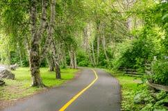 Kurven des Fahrrad-Weges Stockfotografie