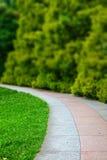 Kurven des Wanderwegs von Pflastersteinen im Sommer-Park Lizenzfreies Stockbild