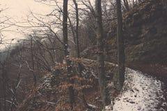 Kurven Sie die linke Bahn, die im Schnee mit Klippe und Baum umfasst wird Lizenzfreies Stockfoto
