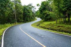 Kurven Sie Weise der Asphaltstraße durch das grüne Feld stockbild
