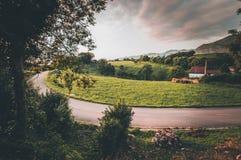 Kurvenreiche Straße entlang den grünen Wiesen und den Wäldern stockbild
