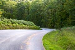 Kurvenstraße, die in einem grünen Wald absteigt Lizenzfreies Stockbild