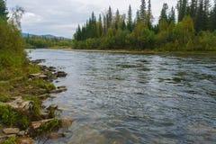 Kurvor av floden Royaltyfri Foto