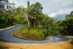 Kurvväg på berget Arkivbild