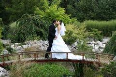 Kus op de brug Stock Foto