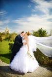 Kus van bruid en bruidegom Royalty-vrije Stock Afbeelding