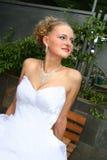 Kus van de bruidegom en de bruid. Stock Fotografie