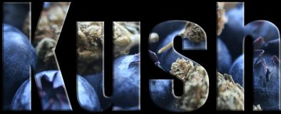Kush Marijuana Logo High Quality Imagenes de archivo
