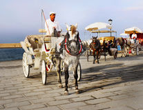 Kusk Horse Carriage Ride Arkivbild