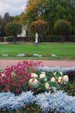 Kuskovo公园在莫斯科 不同的颜色花 秋天蓝色长的本质遮蔽天空 免版税库存照片