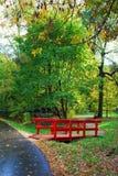 Kuskovo公园在莫斯科 红色桥梁 免版税库存图片