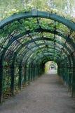 Kuskovo公园在莫斯科 绿色曲拱 库存照片