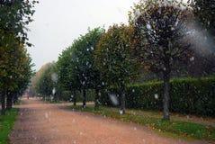 Kuskovo公园在降雪的莫斯科 库存图片