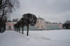 Kuskovopark in Moskou De sneeuwwinter royalty-vrije stock foto
