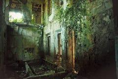 Kuslig förstört och bevuxet vid växtinre av den gamla herrgården Liv efter stolpe-apokalyptiskt begrepp för mänsklighet royaltyfria bilder