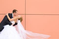 Kuss der Braut und des Bräutigams lizenzfreies stockfoto