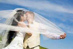 Kuss der Braut und des Bräutigams Lizenzfreies Stockbild