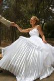 Kuss des Bräutigams und der Braut. Stockfotografie