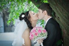 Kuss des Bräutigams und der Braut Lizenzfreie Stockbilder