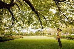 Kuss unter dem Baum Stockfotos