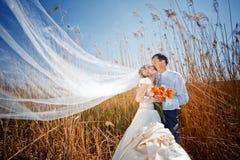 Kussend huwelijkspaar Royalty-vrije Stock Foto