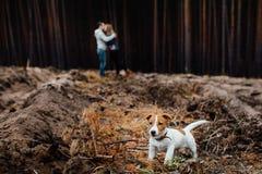 Kussend jong houdend van paar in bos zijn zij verblijf achter thei royalty-vrije stock foto's