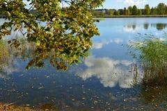 Kust av den guld- hösten för blå sjö Royaltyfri Foto