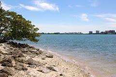Kust av den lilla ön Royaltyfri Bild
