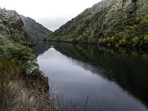 Kust av den Sil floden Arkivbild