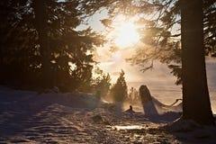 Kust av den snöig yttersidan av Stbske Pleso sjön Arkivfoto