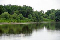 Kust av floden Pripyat Solig dag och fåglar på den kust- stimen Royaltyfri Fotografi