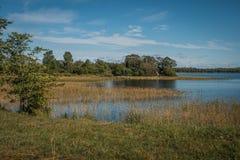 Kust av Lake Onega, Kizhi, Karelia Arkivbilder