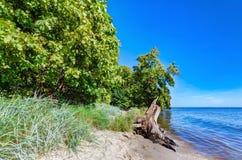 Kust av Puck Bay, Östersjön i Polen Arkivfoto