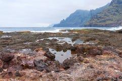 Kust av Punta del Hidalgo tenerife Arkivfoto