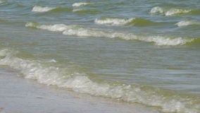 Kust- Azov havsvågor lager videofilmer
