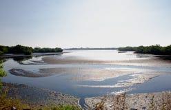 kust- bred flodmynningwaterway royaltyfri bild