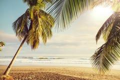 Kust in Costa Rica Royalty-vrije Stock Fotografie