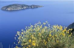 kust crete Royaltyfri Bild