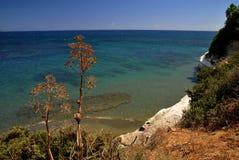 kust- cyprus lanscape Royaltyfri Bild