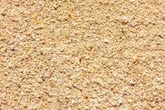 Kust, de oppervlakte van het zand en resten van shells stock foto
