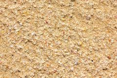 Kust, de oppervlakte van het zand en resten van shells royalty-vrije stock afbeeldingen