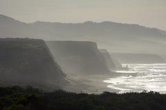 kust- dimmigt för klippor Fotografering för Bildbyråer