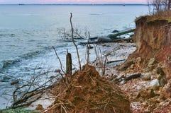 Kust för baltiskt hav, brant havskust, bevuxen kust arkivfoto